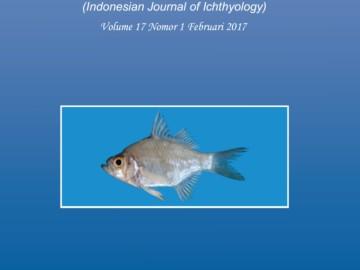 cover JII 17 (1)