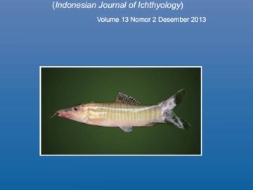 Cover JII 13(2)